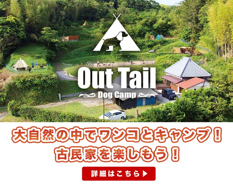 Out Tail Dog Camp 大自然の中でワンコとキャンプ!古民家を楽しもう!