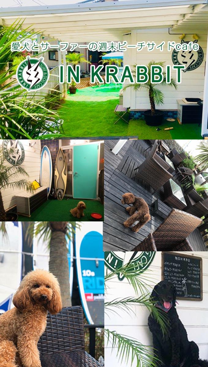 愛犬とサーファーの週末ビーチサイドcafe IN KRABBIT