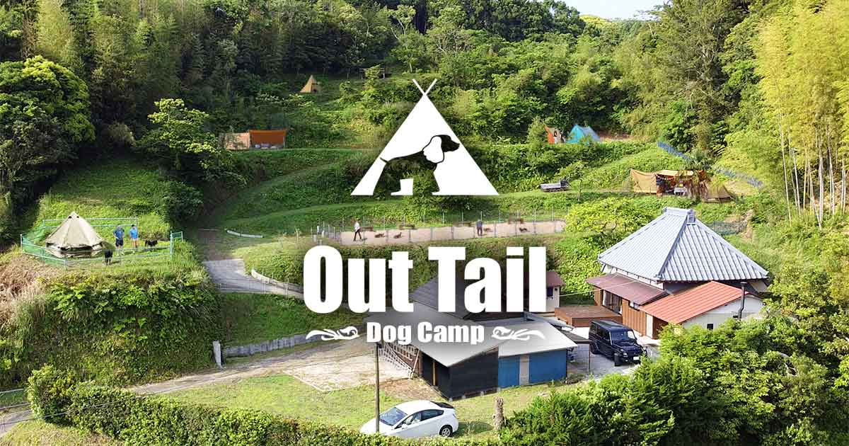 Out Tail Dog Camp